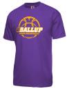 Bowen High SchoolBasketball