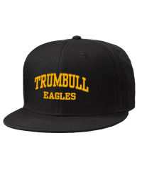 Trumbull High School Eagles Embroidered Wool Blend Flat Bill Pro-Style Snapback Cap