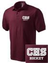 Curtis High SchoolHockey