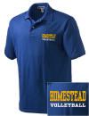Homestead High SchoolVolleyball