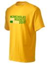Mcnicholas High School