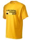 Illini Central High SchoolAlumni