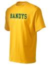 Bandys High SchoolGolf