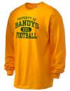 Bandys High SchoolFootball